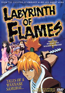 Labyrinth of Flames Box Art
